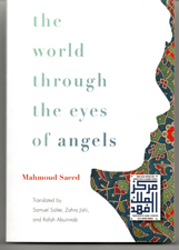 front cover of World through the Eyes of Angels